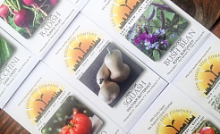 Articles about Gardening with Seeds