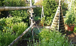 Articles about Gardening Projects