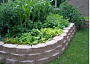 Build a raised bed for vegetables.