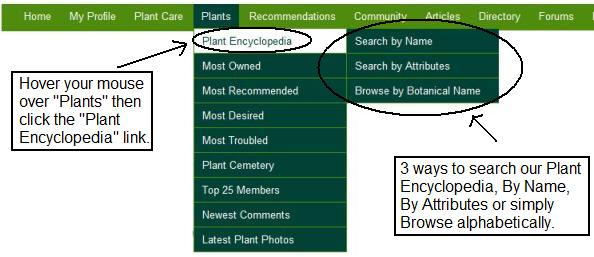 plantsearch3