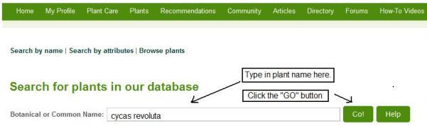plantsearch6